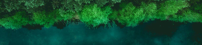 Novidades e Eventos: Vista aérea de um lago com muita vegetação em sua margem.